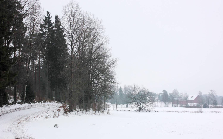 Paysage suèdois couvert de neige.