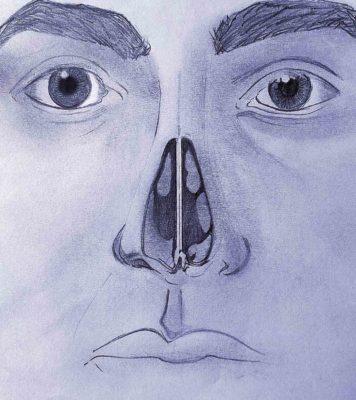 Image du cloison nasale, qui peut être ressenti depuis l'intérieur à partir de stade deux de Khecari mudra.